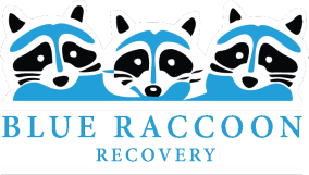 Blue Raccoon Public Adjusters in Denver, Colorado